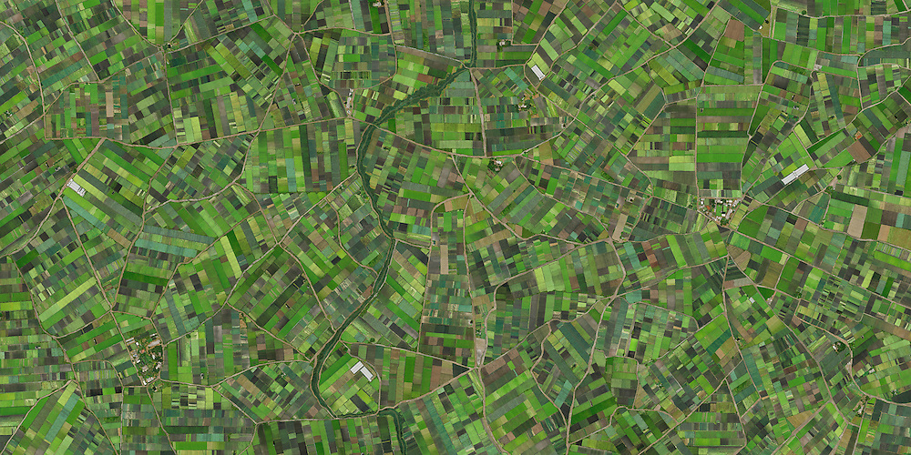 Imagem construida a partir de centenas de fotografias aereas sobre plantacoes de hortalicas