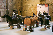 "55th Art Biennale in Venice - The Encyclopedic Palace (Il Palazzo Enciclopedico).<br /> Arsenale Nord. Andorra Exhibition.<br /> Javier Balmaseda (Cuba). ""Fixed in contemporaneity"", 2013."
