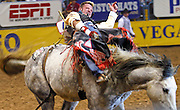 "15 DECEMBER 2002 - LAS VEGAS, NV, USA: Jared Lavergne, of Ville Platte, LA, competes in the bareback riding competition in the 10th round of the National Finals Rodeo in the Thomas and Mack Center in Las Vegas, NV, December 15, 2002. The NFR is the ""Super Bowl"" of rodeo. Only the top 15 cowboys from each event are invited to participate in the NFR, which runs for 10 days every December. All ten performances of the NFR sell out every year. PHOTO BY JACK KURTZ"