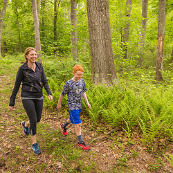 A woman and her son walk in a forest at the Donibristle Reservation in Topsfield, Massachusetts.