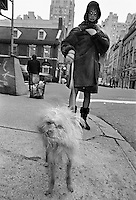 Dog on street; Madison Avenue, NYC 1993