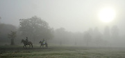 ©London News pictures...16/11/2010. Horse riders enjoy the fog in Richmond Park in London today (Tues). Photo credit should read Stephen Simpson/London News Pictures.