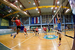 Am're Solomon during volleyball match between Calcit Volleyball and A. Linz-Steg in Mevza league on October 23, 2010 at Sport Halli, Kamnik, Slovenia. (Photo By Matic Klansek Velej / Sportida.com)