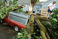 JEROME A. POLLOS/Press..Kevin Hammontree walks on top of a tree that crushed his neighbor's truck Friday on the corner of Spruce Avenue and 2nd Street following a strong wind storm that unexpectedly blew into the area. The sudden wind storm caused damage across the county, but no injuries were reported.