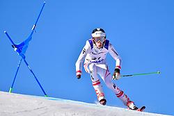 PAJANTSCHITSCH Nico, LW6/8-2, AUT, Giant Slalom at the WPAS_2019 Alpine Skiing World Cup, La Molina, Spain