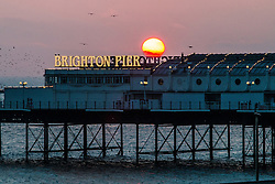 © Licensed to London News Pictures. 02/11/2015. Brighton, UK. Brighton's Palace Pier stands silhouetted against the sunset Today November 2nd 2015. Photo credit : Hugo Michiels/LNP