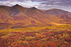 Autumn landscape of the Tombstone Mountains along the Dempster Highway, Yukon Territory, Canada