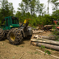 A skidder pulls hardwood logs to a log yard in Eden, Vermont.  Green Mountains.