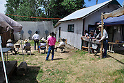 Fast draw range at the Pioneer Days celebration at Idaho City, Idaho