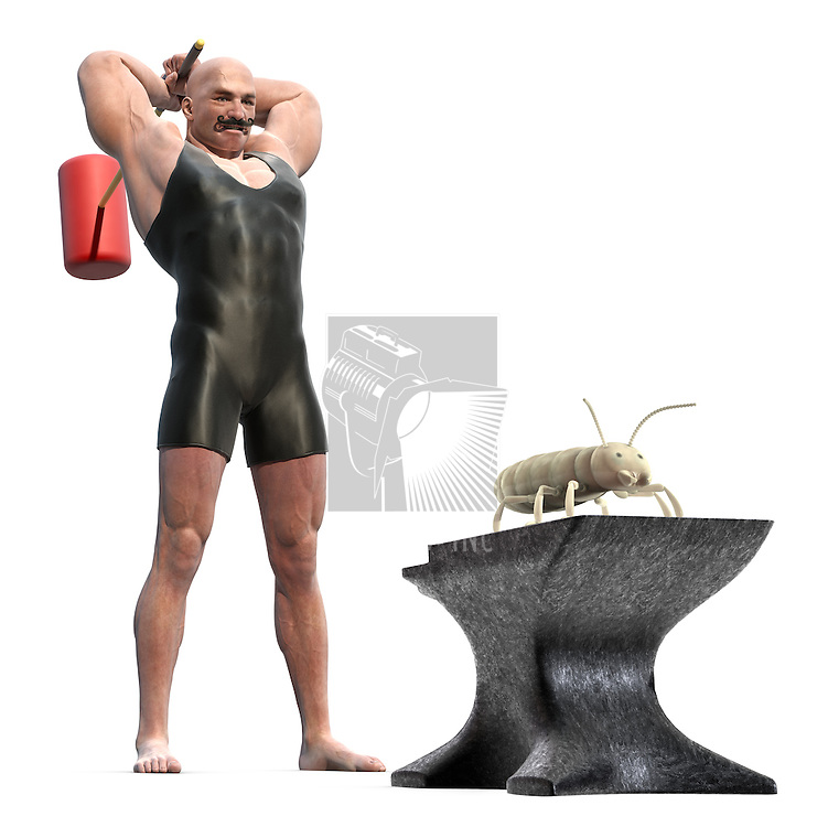 Muscle Man with a mallet behind his back about to smash a termite on an anvil
