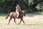Class 40 - Open Ridden Pony