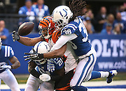 Colts defenders Vontae Davis and Sergio Brown sandwich Bengal tight end Jermaine Gresham on a big fourth down and four in the fourth quarter. The incomplete pass gave the Colts the ball back. Indianapolis hosted Cincinnati at Lucas Oil Stadium Sunday, October 19, 2014.