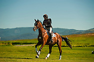 Eventing (equestrian triathlon), Cross Country event, The Event at Rebecca Farms, Kalispell, Montana, Natascha Eickert, Thoroughbred