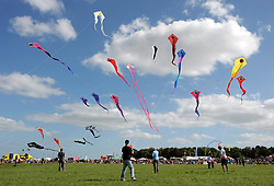 © Licensed to London News Pictures. 31/08/2013. Bristol, UK.  Serenade of Serpents flowing serpent deltas at The Bristol International Kite Festival at Ashton Court Estate.  Guest flyers from across the world have flown in specially to create a  spectacle of both special shaped kites, and team displays. 31 August 2013.<br /> Photo credit : Simon Chapman/LNP