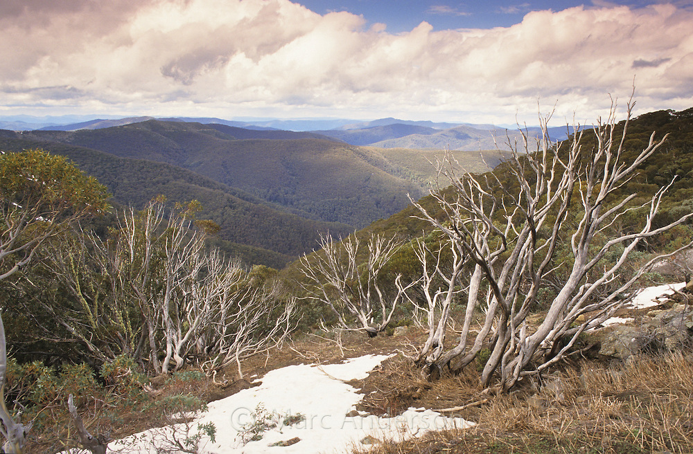 A view of Alpine National Park, Australia.