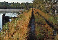 Access road to a Cranberry Pond in White's Bog, Pine Barrens of NJ.  Control gate is part of the flooding system of connecting ponds