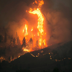 Trees erupt in flames on a ridge line as the Elk fire grows near Pine, Idaho. Sunday August 11, 2013