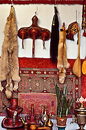 The objects in this tableau in the almaty studio of artists Amangul Iknanova and Zhangir Umbetov are examples of traditional Kazakh life:  hanging on the wall are, from left, a tomtemic wolf hide: a leather Kese Kap, which is used to store cups and bowls and is tied to the saddle: a horse tail: a fox hide; a small, decorative felt storage bag, and two Dombiras, also called Dombras, the traditional musical insturment.  Standing on the table are, from left, three Torsiqs, which are flasks to hold Kumiss, the fermented mare's milk drink: a leather belt with siver and turquoise decoration: a brass mortar and pestle; a Kumiss cup, pitchers for oil: and imported Russian Samovar for tea.  A Tuskeez hangs on the wall