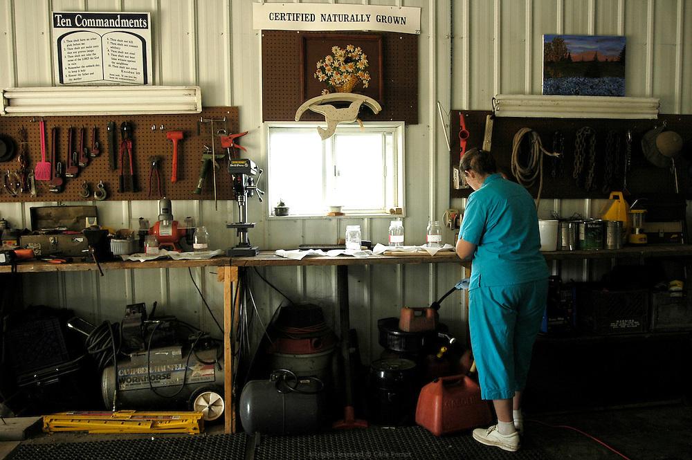 DANJO Farms, Joanne vient de r&eacute;cup&eacute;rer les graines de plusieurs vari&eacute;t&eacute;s de tomates que les Nelson souhaitent cultiver &agrave; la prochaine saison. Elle les r&eacute;pertorie avant de les faire s&eacute;cher &agrave; l'abri de la lumi&egrave;re.<br /> <br /> A small American family farm takes up the challenge of &quot;naturally grown&quot; Missouri, USA, 2006-2007.<br /> DANJO Farms, Joanne is saving seeds from different varieties of tomatoes that they wish to grow next season. She lists them before drying them away from the light.