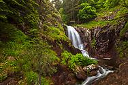 Waterfalls Canyon in June