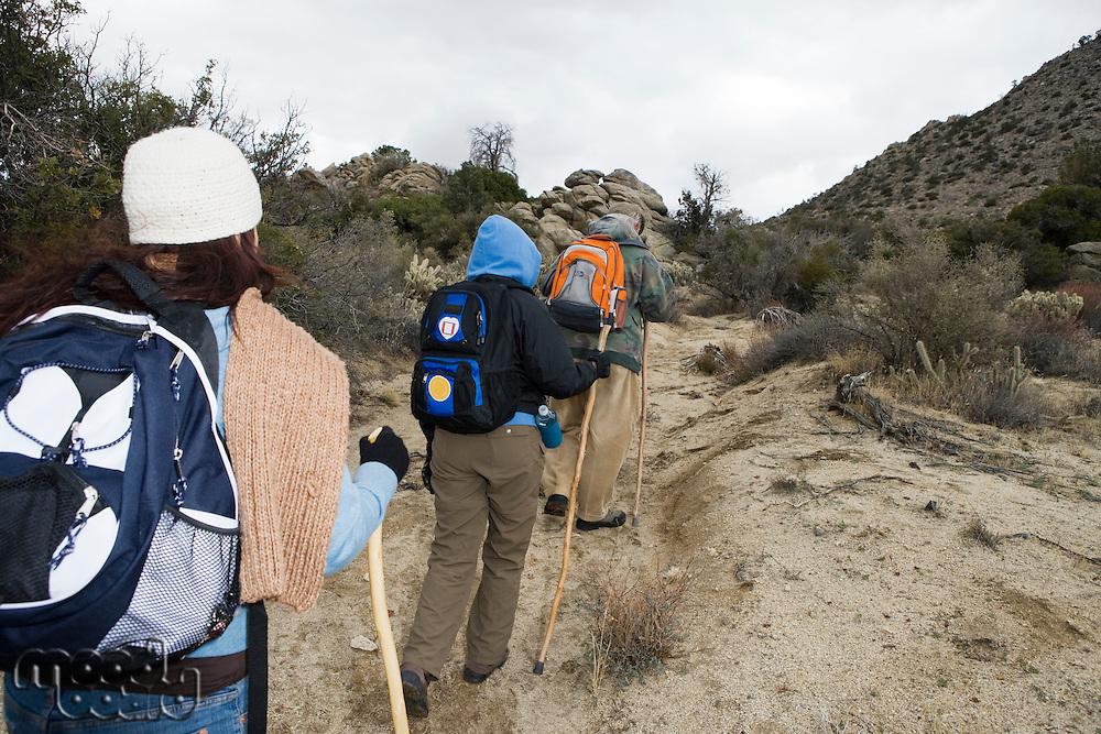 Three people hiking