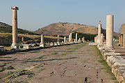 Colonnaded Sacred Way, 2nd century AD, leading 820m along the 3km road from the acropolis of Pergamon on the hill in the distance, to the Asclepium or Sanctuary of Asclepius, modern-day Bergama, Izmir, Turkey. The Asclepium is named after the god of healing and housed a sacred spring where people could bathe and cure their illnesses. Galen, the most famous doctor in the Roman Empire and physician of Emperor Marcus Aurelius, worked in the Asclepium for many years. Picture by Manuel Cohen