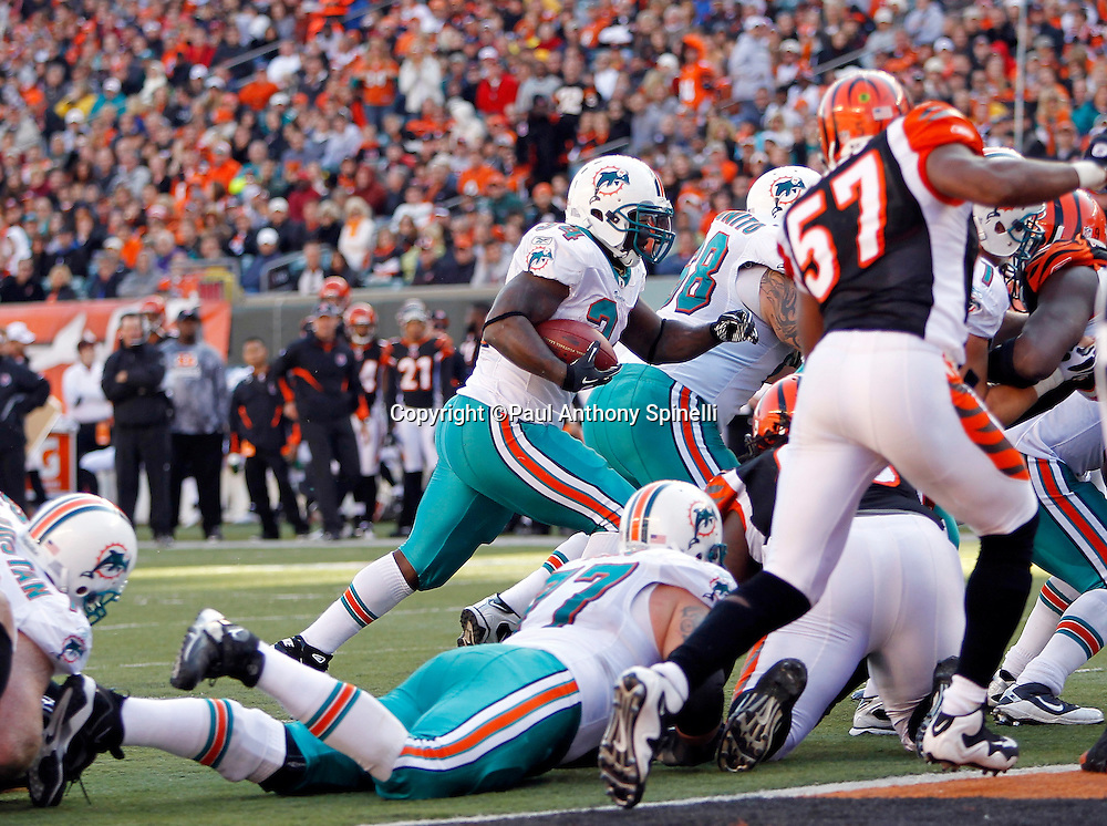 Miami Dolphins running back Ricky Williams (34) runs for a one yard touchdown that gives the Dolphins a 22-14 lead during the NFL week 8 football game against the Cincinnati Bengals on Sunday, October 31, 2010 in Cincinnati, Ohio. The Dolphins won the game 22-14. (©Paul Anthony Spinelli)