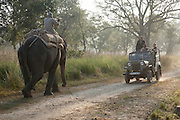Tourists in an open vehicle pass a man on an elephant within Corbett National Park, Uttarakhand, India.