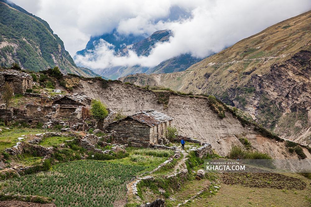 Pato village  in Johar valley of Uttarakhand