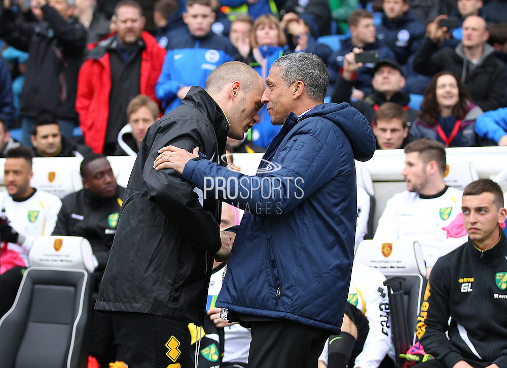 Norwich City Manager Alex Neil and Brighton Manager Chris Hughton during the Sky Bet Championship match between Brighton and Hove Albion and Norwich City at the American Express Community Stadium, Brighton and Hove, England on 3 April 2015. Photo by Phil Duncan.