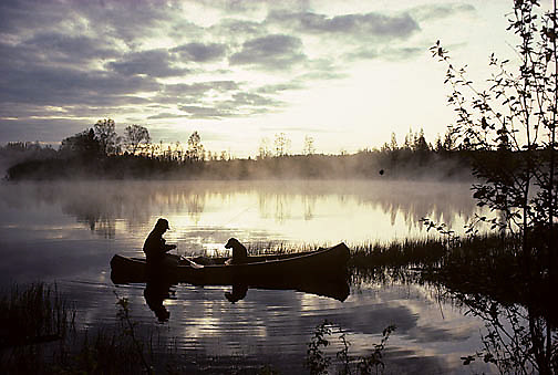 Canoeist and black lab fishing on small northern lake Early sunrise. Summer.  Northern Minnesota.