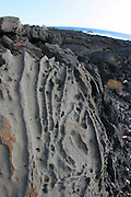 Eroded lava rock, South Point, Island of Hawaii