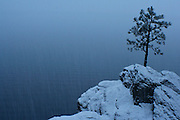 A lone pine on the shore of Lake Coeur D Alene during a snow storm. PLEASE CONTACT US FOR DIGITAL DOWNLOAD AND PRICING.
