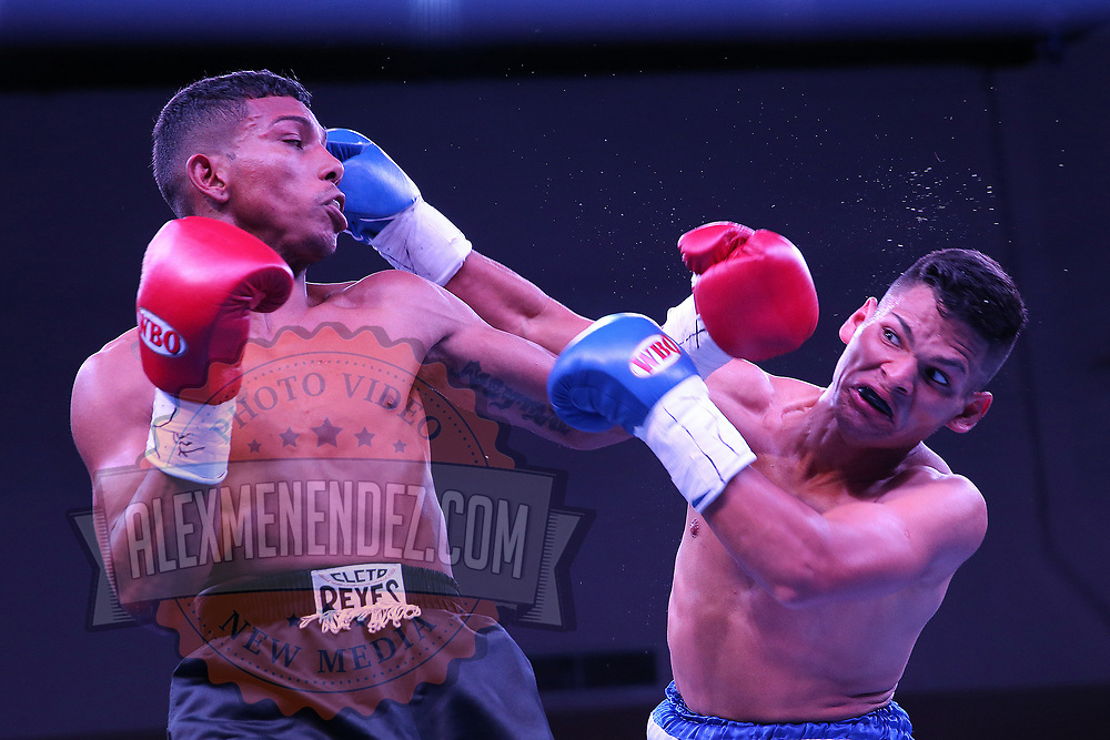 Eliecer Tenoria (L) and Jose Beitia exchange blows during their WBO boxing match at the Hotel El Panama Convention Center on Wednesday, October 31, 2018 in Panama City, Panama. (Alex Menendez via AP)