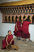 Monks inside Chimmi Lhakhang monestary, Punakha, Bhutan