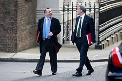© Licensed to London News Pictures. 06/02/2018. London, UK. International Trade Secretary Liam Fox and Minister without Portfolio Brandon Lewis arriving in Downing Street to attend a Cabinet meeting this morning. Photo credit : Tom Nicholson/LNP