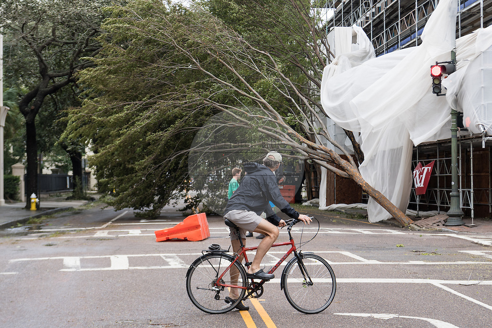 A cyclist stops to view a downed tree blocking Meeting Street in historic downtown after Hurricane Matthew passed through causing flooding and light damage to the area October 8, 2016 in Charleston, South Carolina. The hurricane made landfall near Charleston as a Category 2 storm but quickly diminished as it moved north.