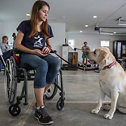 BOYDS, MD - SEP09: Kaitlyn Holman, service dog instructor, trains service dogs at the Warrior Canine Connection in Boyds, Maryland.  (Photo by Evelyn Hockstein/For The Washington Post)