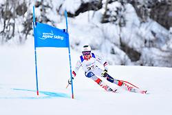 Downhill, BAUCHET Arthur, LW3, FRA at the WPAS_2019 Alpine Skiing World Championships, Kranjska Gora, Slovenia