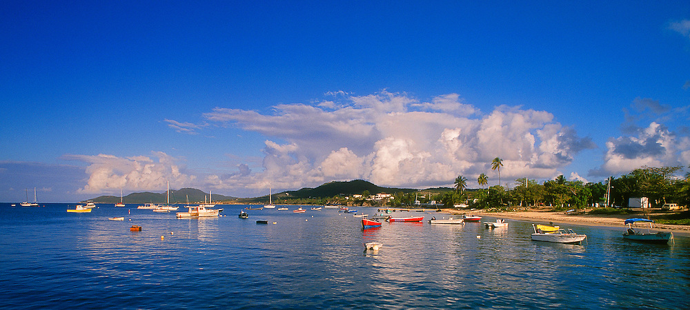 Vieques, Puerto Rico: fishing boats in bay at Esperanza.