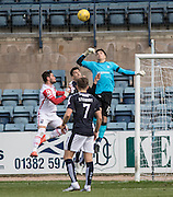 Dundee&rsquo;s David Mitchell punches clear - Dundee v Ross County - Ladbrokes Premiership at Dens Park<br /> <br />  - &copy; David Young - www.davidyoungphoto.co.uk - email: davidyoungphoto@gmail.com