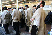Israel, Upper Galilee, Orthodox jews, wearing sacks as a sign of mourning, are praying in memory of the destruction of the Temple in Jerusalem, at the Honi HaM'agel, (Honi the Circle-drawer) tomb