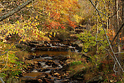 a quiet,fall, babbling brook hidden away in weston,vermont. no property release