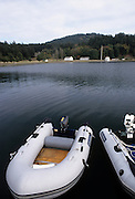 Dinghies, Harbor, San Juan Islands, Washington