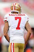 San Francisco 49ers quarterback Colin Kaepernick (7) during the 49ers 33-14 win over the Tampa Bay Buccaneers at Raymond James Stadium on December 15, 2013 in Tampa, Florida.                                    ©2013 Scott A. Miller
