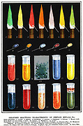 Colour reaction of metals. Chromolithogrpah, 1892.