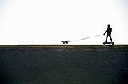 Nederland, Kijkduin, 7-2-2018Een energieke en sterke hond wordt uitgelaten .Zijn baasje staat op een soort skateboard wat door de hond aan de lijn getrokken wordt . Het is een pitbull type hond .Foto: Flip Franssen