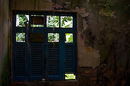 An abandoned house in Dois Rios on the island of Ilha Grande, Brazil. Photo by Andrew Tobin/Tobinators Ltd