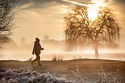 © Licensed to London News Pictures. 14/02/2019. London, UK. A visitor walks past a pond as mist clings to the water at first light in Bushy Park. Clear skies and warmer temperatures are expected in the south later today. Photo credit: Peter Macdiarmid/LNP