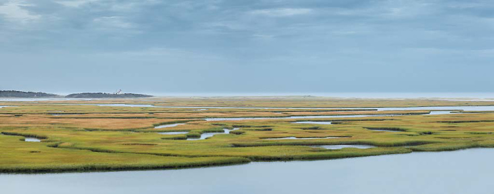 As summer turns to autumn, the grasses of Nauset Marsh changes from green to gold.